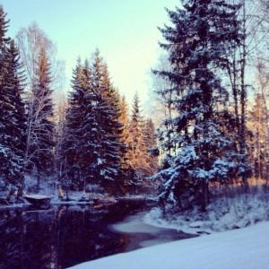 kyroboas vinter